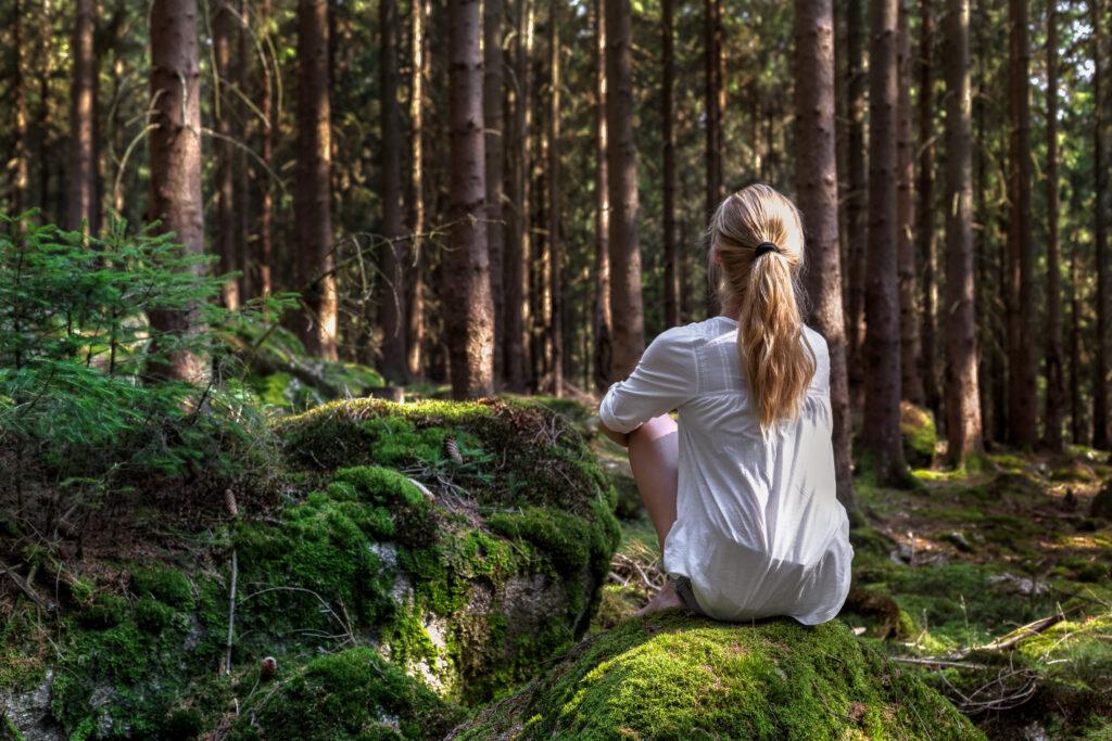 Meditatie veluwe voelen